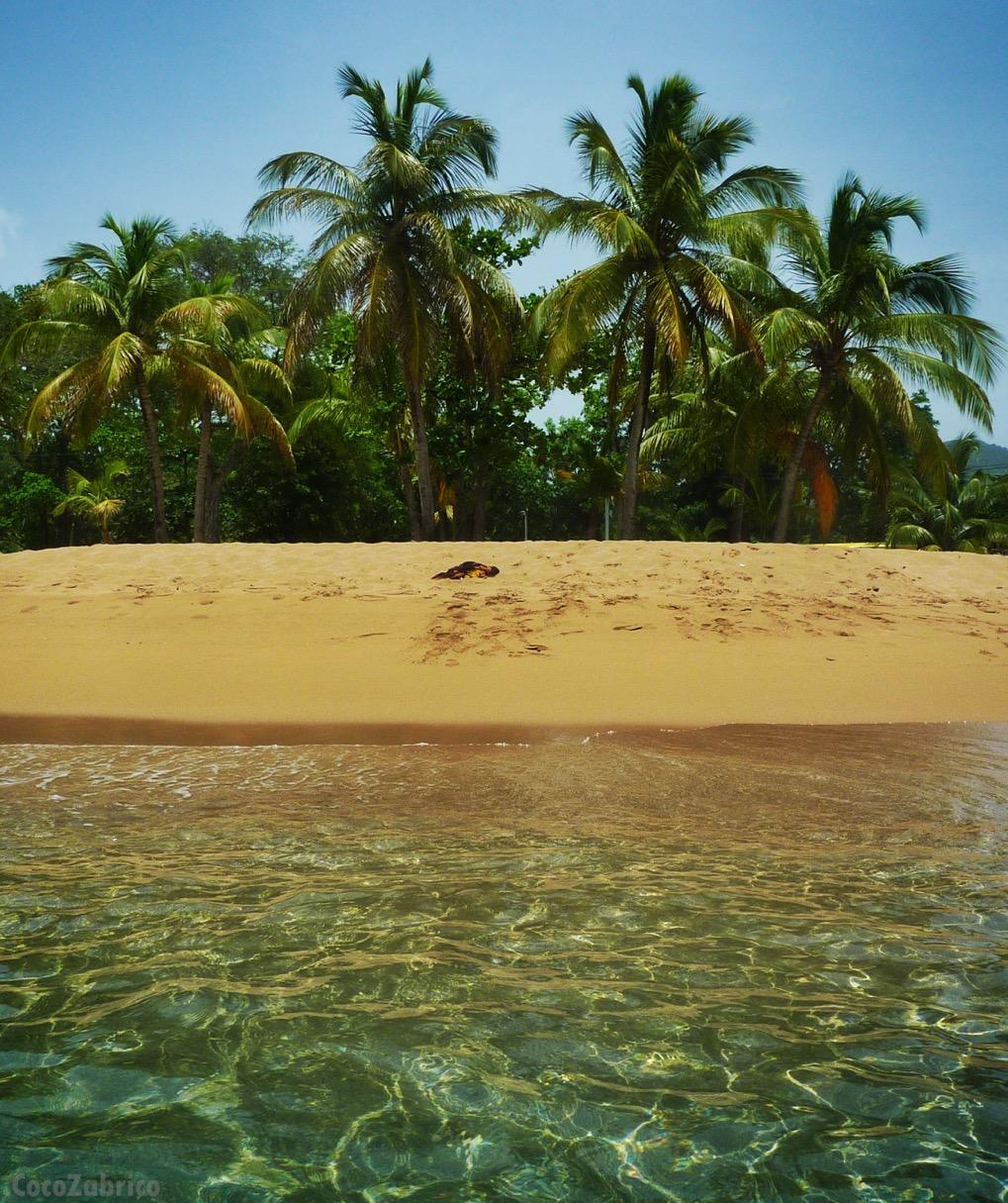 Deshaies – Guadeloupe