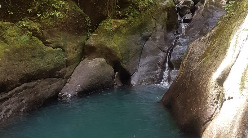 Basse-Terre : Bassin Bleu & Cie